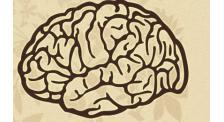 济南脑瘤康复胶质瘤康复