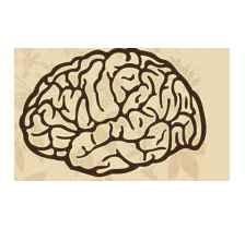 济南脑瘤康复胶质瘤康复治疗脑瘤