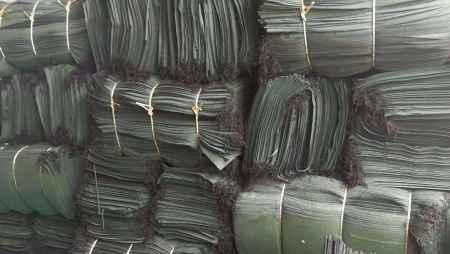 环保型绿化袋价格