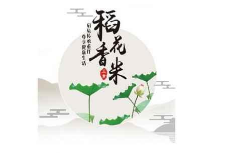 天然水稻种植