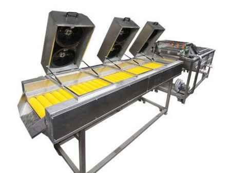 山东蔬菜清洗机生产供应厂家